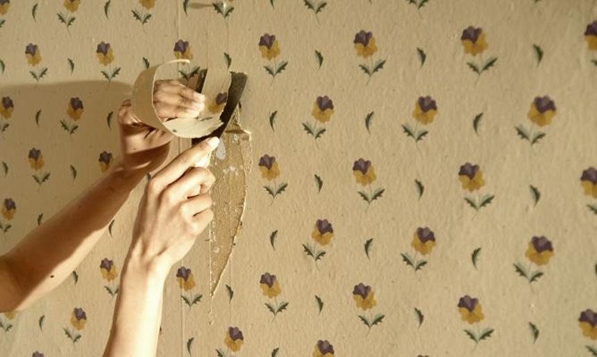 quieres quitar papel pintado o vinlico de la pared de una habitacin