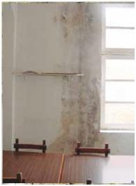 Pinturas el artista humedad por capilaridad - Como eliminar la humedad de las paredes ...